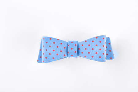 Beautiful blue bow tie with red spots isolated on white background. Girls hair accessory. Stockfoto