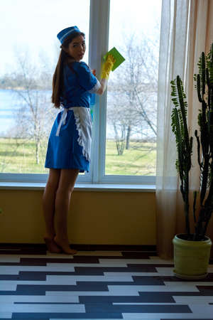 Pretty housemaid cleaning window.