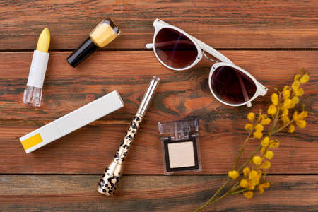 Accessories of stylish lady, brown background. Cute feminine stuff: yellow nail polish, lipstick, eyeliner, eyeshadow. Sunglasses with white rim, cosmetics and pussy willow twig. Stock Photo