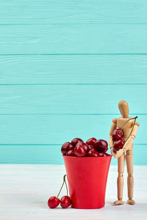 Human wooden mannequin and cherries. Ripe tasty berries in bucket on blue wooden background with copy space. Food and nature.