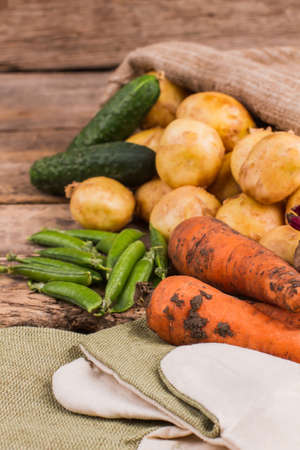 Gather of fresh vegetables form the garden. Close up. Carrots, potatoes, peas and cucumbers. Banque d'images