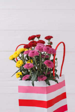 Bouquet of multicolored chrysanthemus flowers in a bag. Striped shopping package. White wood background. Banque d'images