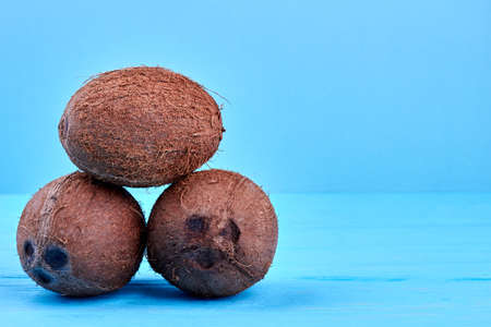 Tropical organic coconuts on colorful wooden background.