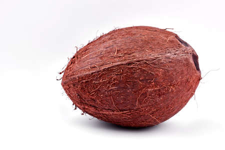 Whole brown coconut on light background