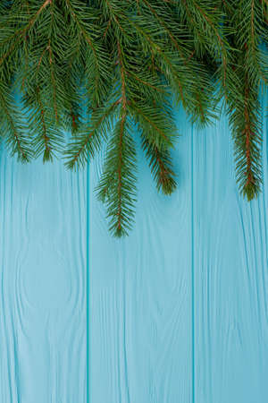 Green fir branches on wooden background. Spruce branches on blue wooden surface with copy space. Winter holiday greeting card. Stock Photo
