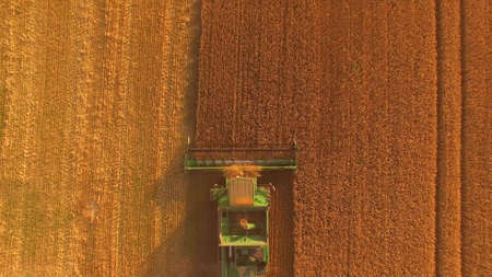 Combine with golden field. Top view of agricultural machine. Stok Fotoğraf - 119578806
