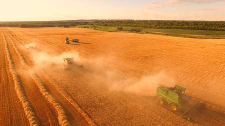 Combine harvesters in motion. Sow seeds and gather profits.
