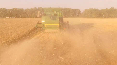 Back view of a combine. Wheat field. Stok Fotoğraf