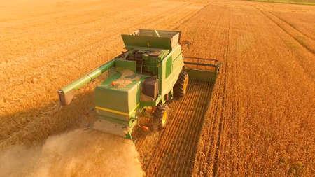Tetiiv, Ukraine. Combine harvester on golden field. Stok Fotoğraf