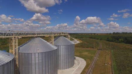 Grain bins horizon and sky. Wheat field.