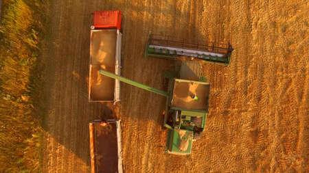 Combine unloads grain into truck. Top view of agricultural machines. Stok Fotoğraf
