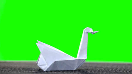 White origami swan on green screen. Folded paper bird on chroma key background. Beautiful paper decoration.