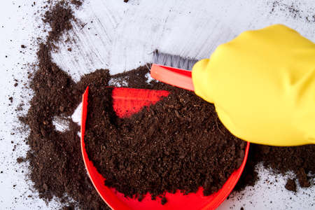 Close up of sweeping soil with red brush and dustpan. Person with protective gloves sweeping floor with small brush and dustpan. Housekeeping concept. Reklamní fotografie
