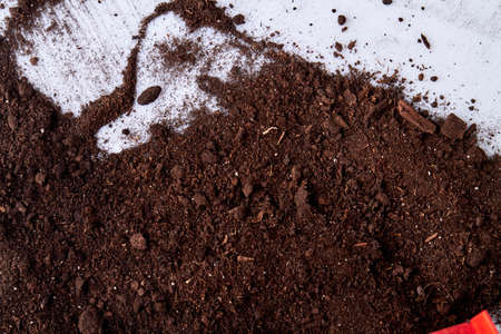 Dark soil on white background. Spilled potting soil on the floor. Ground surface close up. Cleaning concept.