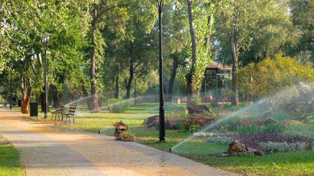 Water sprinkle system in summer park. Sprinkler showering lawn. Beautiful park landscape design.