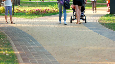 People walking in the park on sunny day. People walk on the asphalted road in the park. Woman with stroller. People, summer vacation and leisure concept.