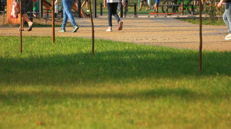 People walking in city park, back view. Green lawn in a public park. Urban life in summer.