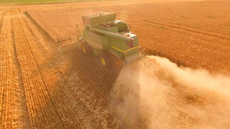 Combine harvester in action. Basics of agribusiness.