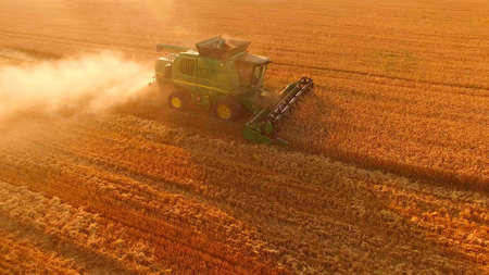 Golden field and combine. Agribusiness and technologies.