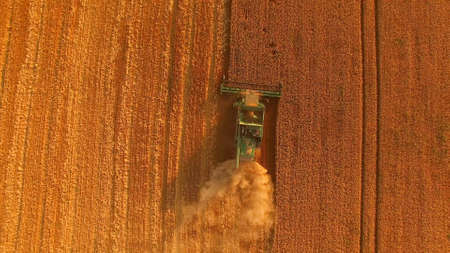 Field and combine, aerial view. Agricultural machine in motion.