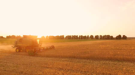 Field and combine at sunrise. Farming as part of economy.
