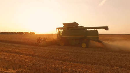 Side view of combine harvester. New farm machinery in action.