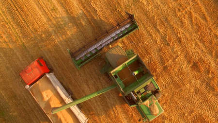 Combine and truck with grain. Agricultural machines, top view.