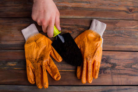 Man holds black garden shovel. Stained pair of workers gloves. Old wood background. Top view, flat lay.