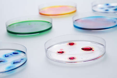 Lab petri dishes with various colorful liquids. Isolated on white background.