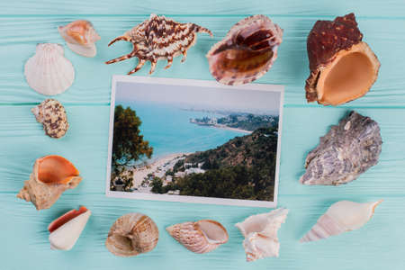 Photography with the sea is surrounded by different sea shells. Blue wooden desk.