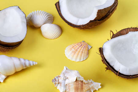 Ripe cracked coconuts and seashells closeup. Isolated on yellow background.