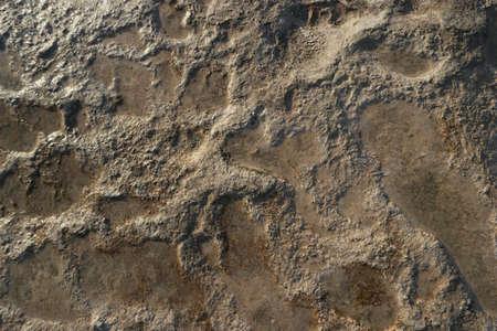 Travertines pattern background at Pamukkale, Turkey. Brown plaque travertine in Pamukkale, Turkey.