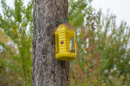 Yellow birdhouse from a plastic bottle on a tree against the background of autumn trees