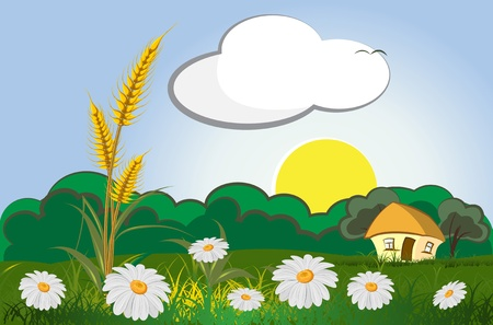 agriculture landscape with wheat and house  Vector