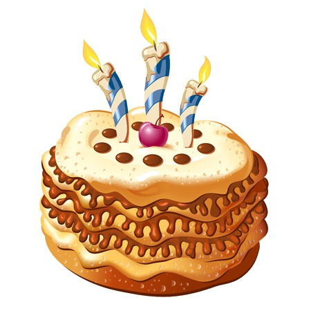 celebrate birthday cake with candles  on white