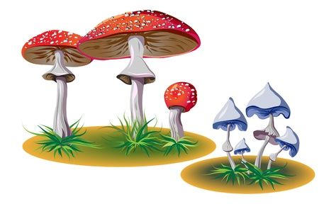 poisonous mushrooms with grass Stock Vector - 9721932