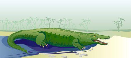 crocodile on tropical background Vector