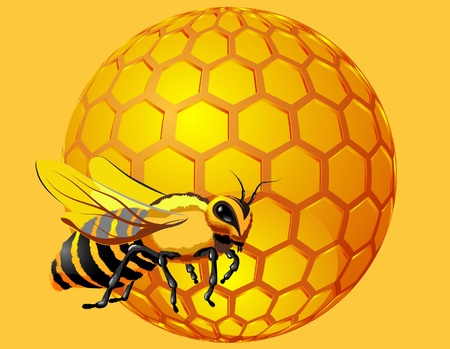 beeswax: bee with honeycomb