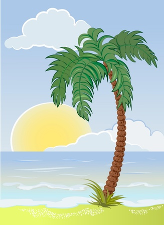 palm tree on the sea beach Vector