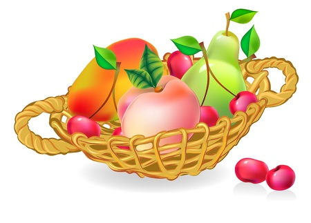 cherry wood: basket with fruits collection Illustration