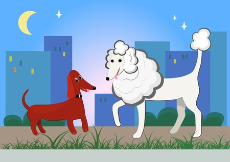 walking dogs in the evening town Vector