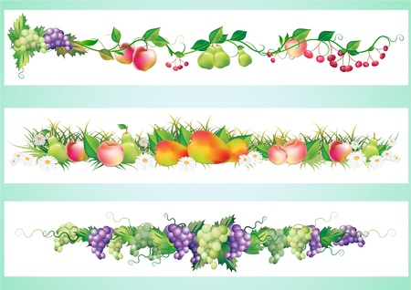 autumn flowers: fruits diet border