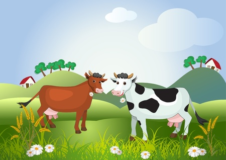Two cows on meadow fields with flowers