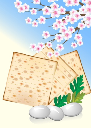 Jewish celebrate passover with eggs matzo and flowers