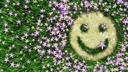 smily: flower smiley on the grass decorative background Stock Photo
