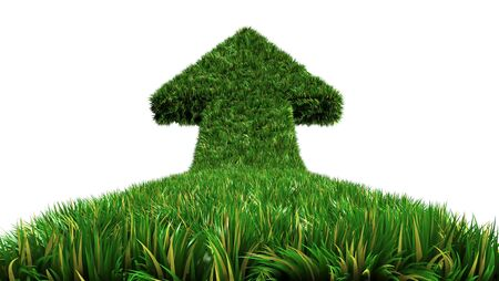 overgrown: arrow from grass way, ecologic symbol on isolate white background Stock Photo