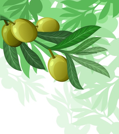 olive tree hanuka israel holiday background Vector