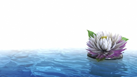 decorative holiday background flower with stone on the water photo