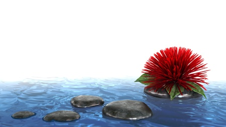 decorative holiday background flower with stone on the water Stock Photo - 17697483