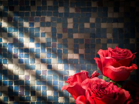 tiled wall: red rose on tiled wall decorative concept background